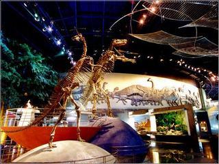常州恐龙城自由行 恐龙园 温泉 商务酒店 四星 五星酒店